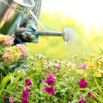 How To Design Your Perfect Garden