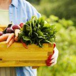 6 Tricks to Grow Your Best Vegetable Garden Ever