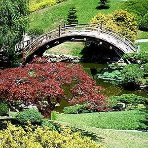 9. Huntington Library, Art Collection and Botanical Gardens