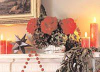 Rose and Hydrangea Arrangement