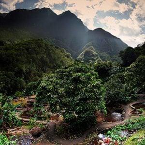 3. Iao Valley and Kepaniwai Park Gardens