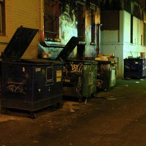 11. I Dig through Dumpsters