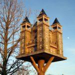 Building Extreme Birdhouses