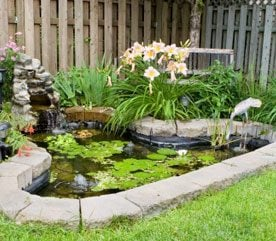 5. Turn a Kiddie Pool into a Garden Pond