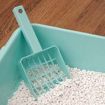 5 More Things To Do with Cat Litter