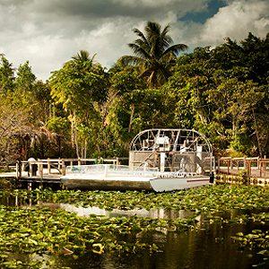 7. The Everglades