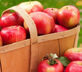 Food Myth #2: An Apple a Day Keeps the Doctor Away