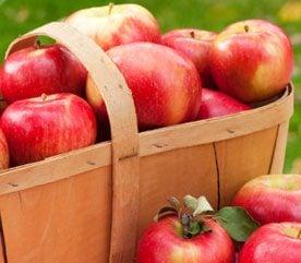 Food Myth #2: An Apple a Day Keeps the Doctor Away