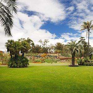 5. Royal Botanic Gardens & The Domain