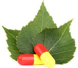 Best Supplements for Diabetes: Gymnema Sylvestre