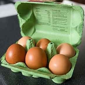 5 Things To Do with Egg Cartons