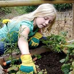 Make Knee Pads for Gardening