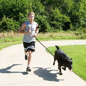 Jogging: The Why and The How