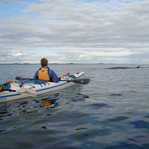 6. Take a paddle around the Bay of Fundy.