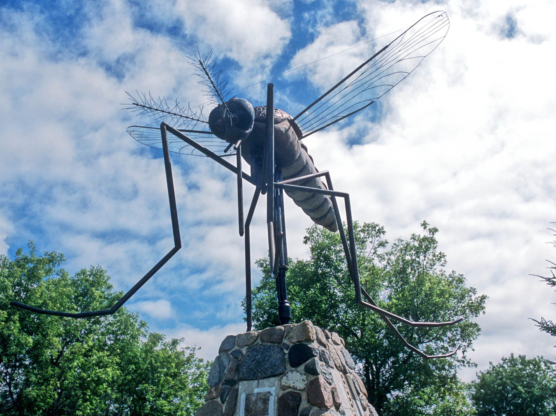 1. Komarno, Manitoba