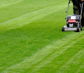 3. Oil Your Mower Blades