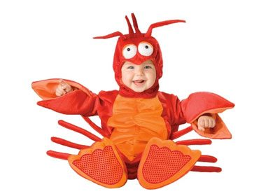 Little Lobster