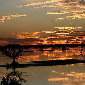9. Merritt Island