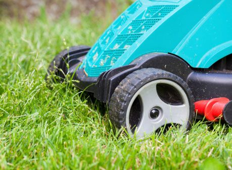 Calculate Mowing Needs