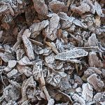 What is Mulch? Learn the Basics of Mulch for Landscaping a Garden