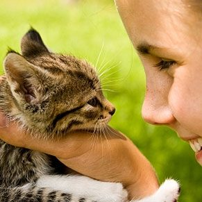 5 Tips for Choosing a New Pet