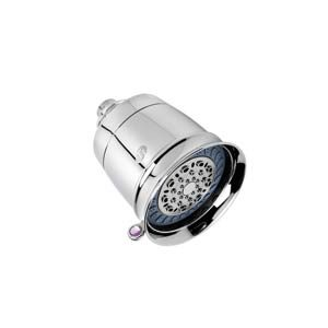 8. T3's Source Showerhead