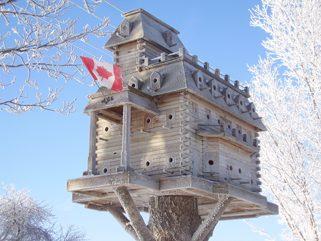 Bird Palace