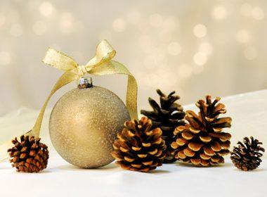 Ribbon Pinecone Ornament