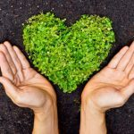 5 Tips to Green Your Home For Earth Day