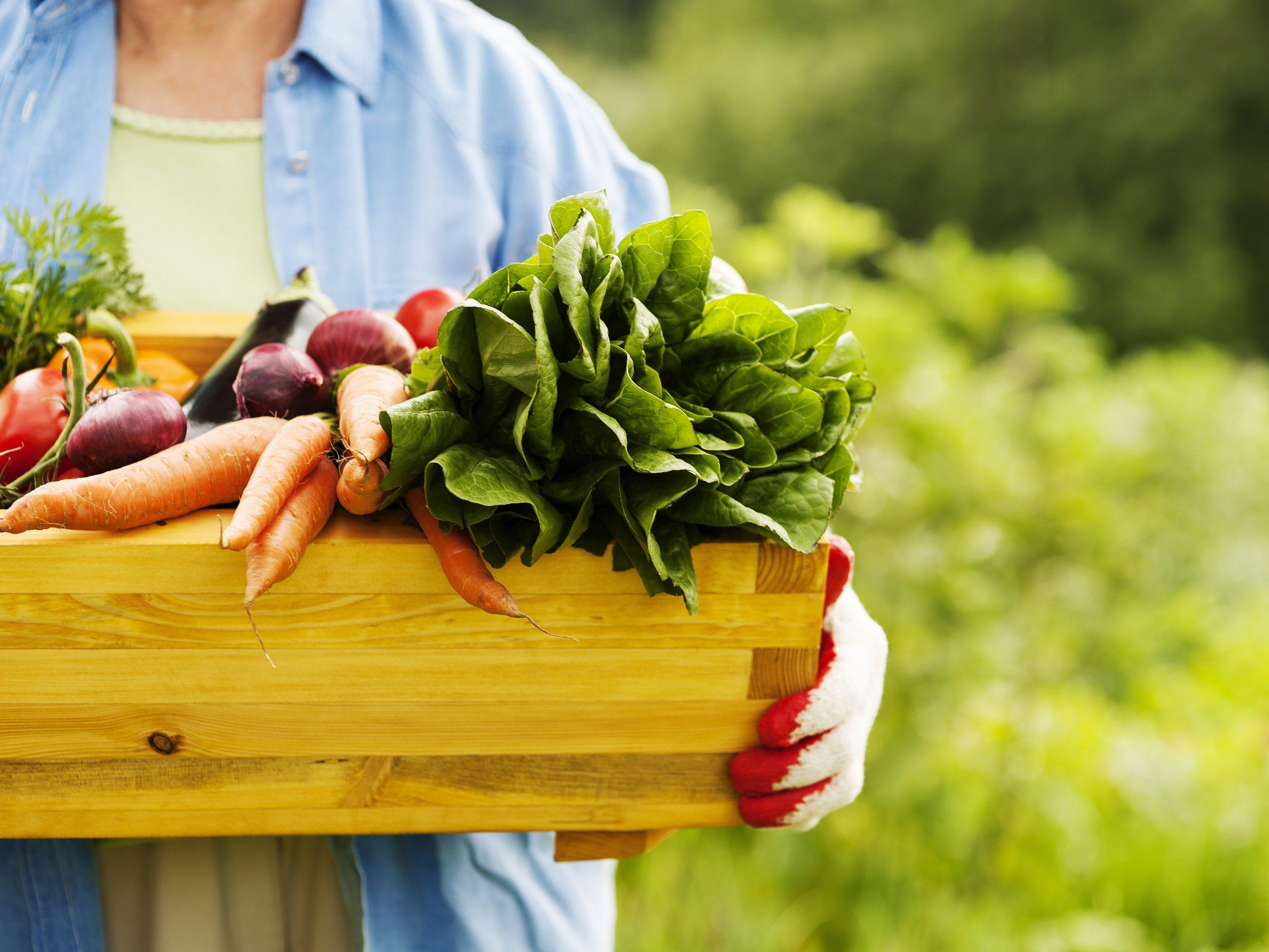 12. Plantez des légumes en vue dégagée