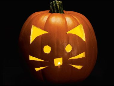 Pumpkin Pattern #2: Cat's Whiskers. This purrfectly cute pumpkin carving ...