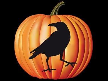 Pumpkin Pattern #22: Raven