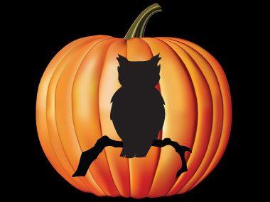 Pumpkin Pattern #10: Creepy Owl
