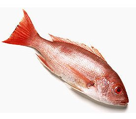 5. How to Buy the Freshest Fish