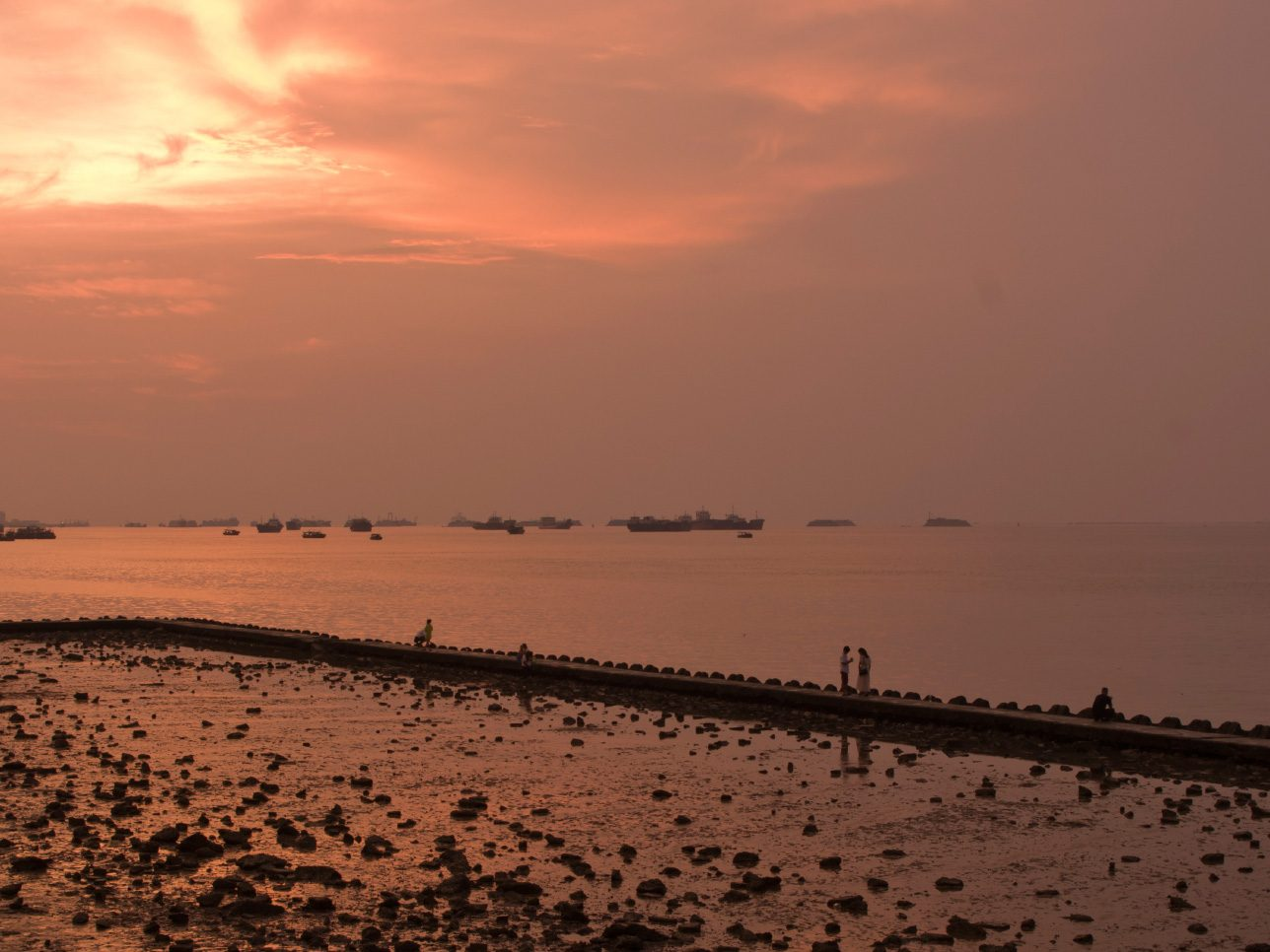 Explore the Red Seabeach in China
