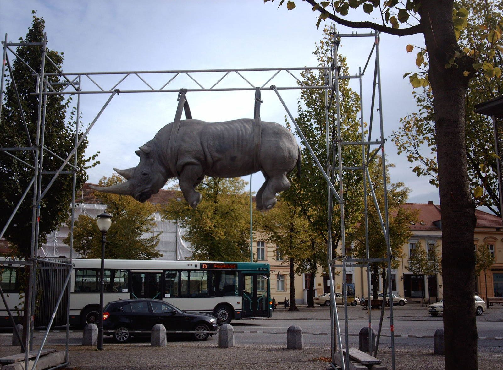 Hanging Rhino