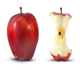 Growing Apples: Problem Signs and Symptoms to Watch for