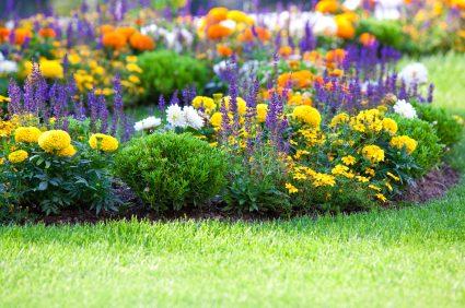 Garden Design for Edging Raised Beds