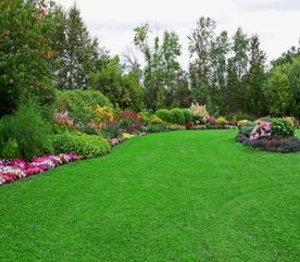 the Right Plants for Your Garden Landscape