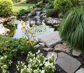 Landscape Design Make Your Own Water Garden