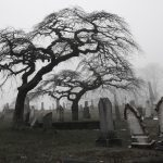 The Monster-Hunter's Travel Guide: 10 Spooky Must-See Destinations