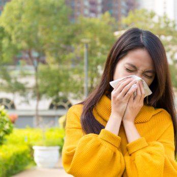 The Seasonal Allergy Survival Guide
