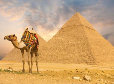 Places to Take a Selfie: Camel Ride in the Egyptian Desert