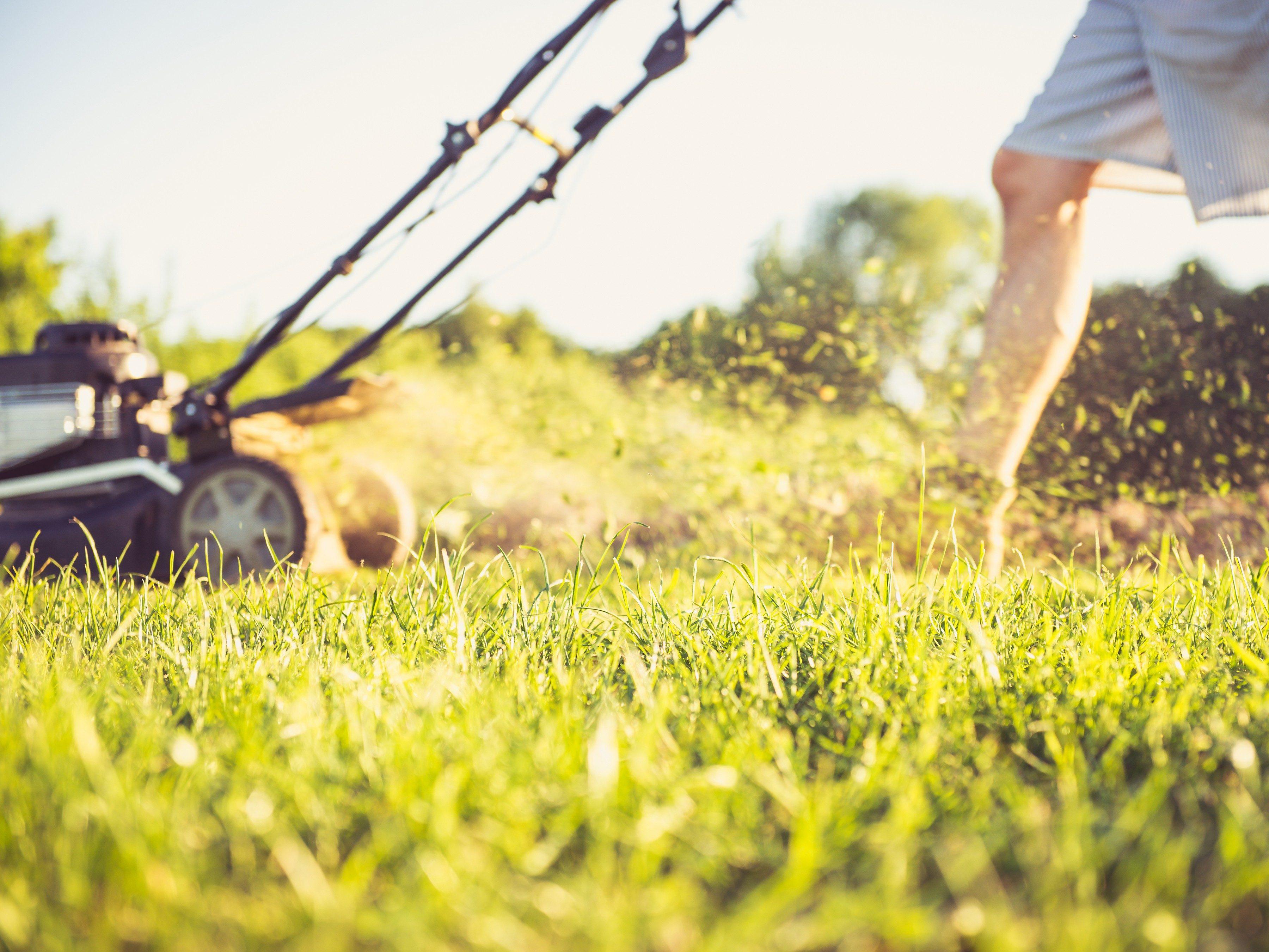 2. Réduisez la taille de votre pelouse