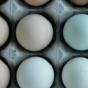 How to Make Perfect Hard-Boiled and Soft-Boiled Eggs