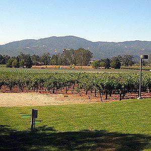 California wine attractions #5: The Silverado Trail