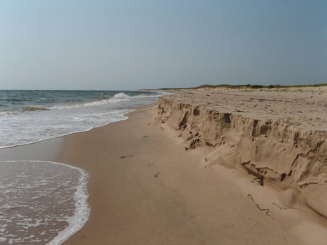 Laudable Land of the Free: Talking Beach