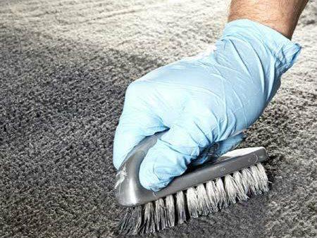 Restoring Carpet and Velour: Step 2