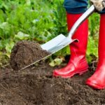 How to Replenish Your Soil and Improve the Health of Your Landscape for Years to Come