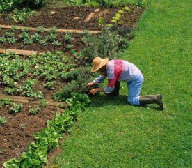 The Landscape and Garden Spring Checklist